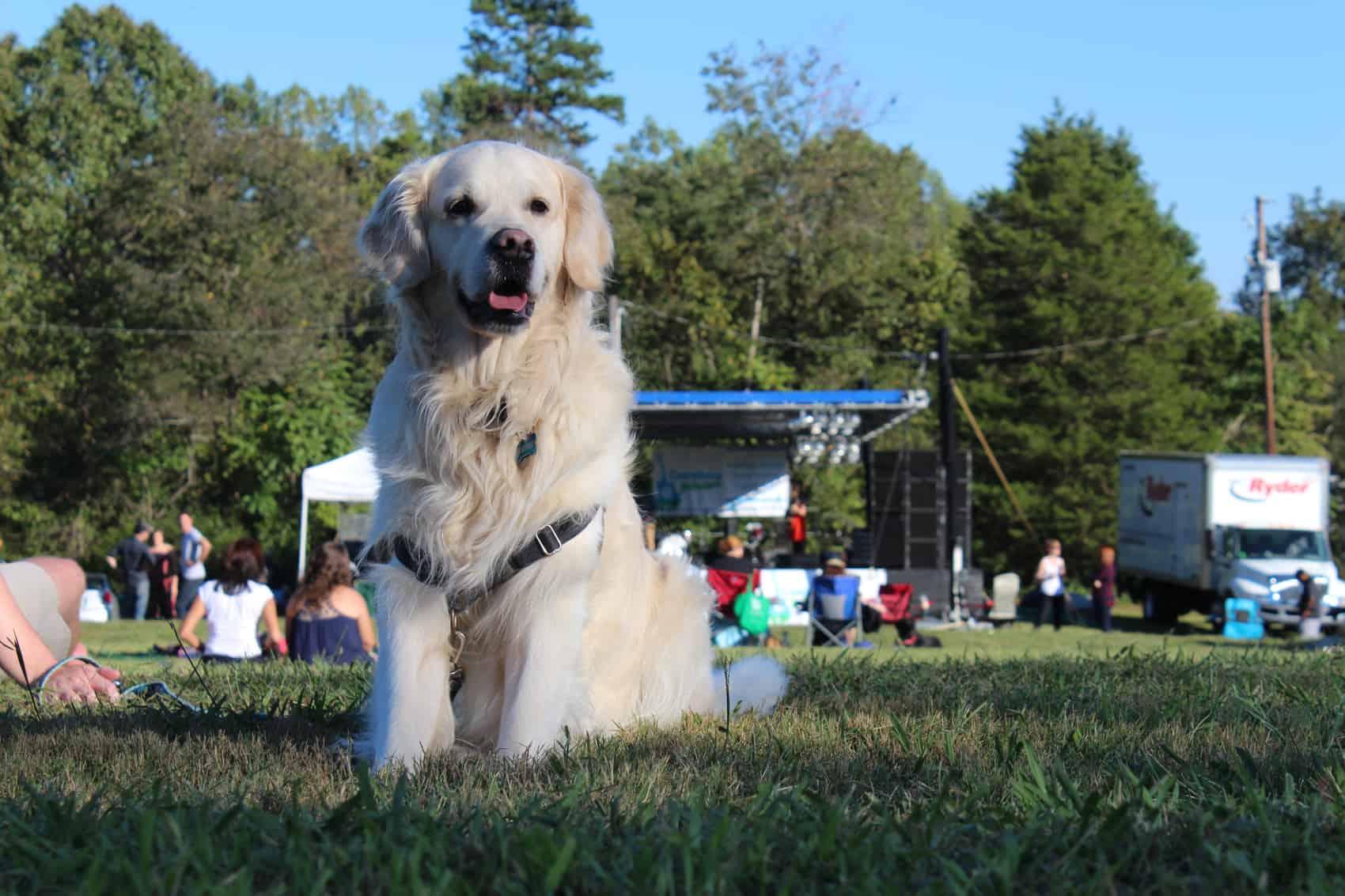 Carolina Jubilee Supports Carolina Farm Trust