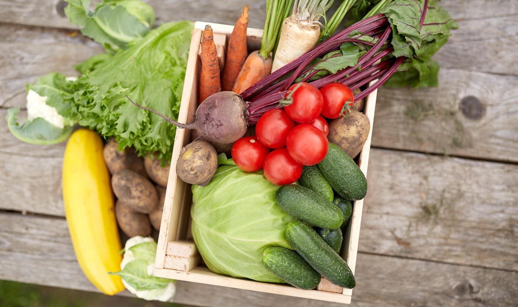 Carolina Farm Trust Filling Gaps In The Local Food Movement Through Carolina Jubilee Music Festival